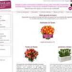 catalogue bouquets fleurs aquarelle