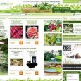 Plantes et Jardins et LE spcialiste des Plantes sur Internet. Dcouvrez toutes les plantes et des conseils de professionnels. Magazine et catalogue en ligne uniquement. Livraison en France seulement.