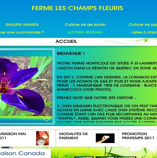 catalogue graines lys et iris champs fleuris