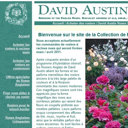catalogue David Austin