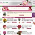 Foliflora propose de nombreuses fleurs que vous pouvez rapidement faire livrer partout en France. Les compositions sont originales, et les fleurs toujours trs fraiches. 